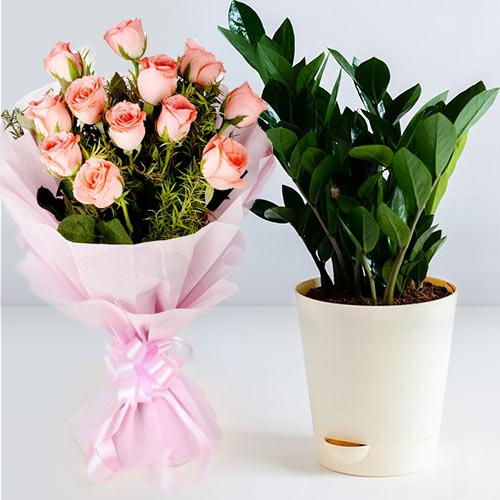 Eye-Catching Bouquet of Pink Roses with Zamia Live Plant