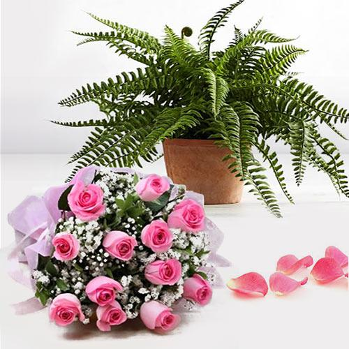 Fantastic Bouquet of Pink Color Roses with Bostern Fern Pot