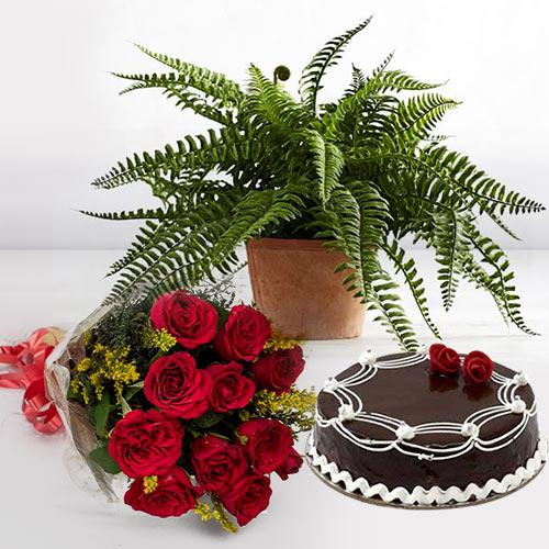 Heavenly Present of Air Purifying with Rose Bunch N Cake