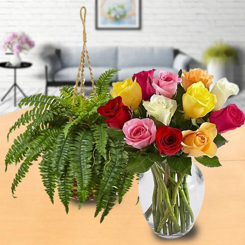 Charming Arrangement of Colourful Roses with Hanging Bostern Fern