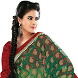Amazing Green Net Saree