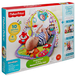 Buy Fisher Price 3-in-1 Musical Activity Gym
