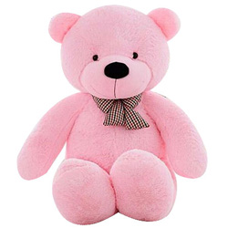 Special Gift of Huge Pink Teddy