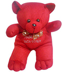 Adorable Deep Red Teddy Bear