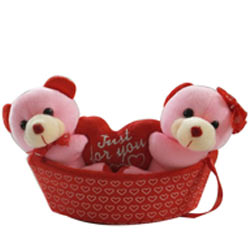 Eye-Catching Pair of Teddies In a Boat