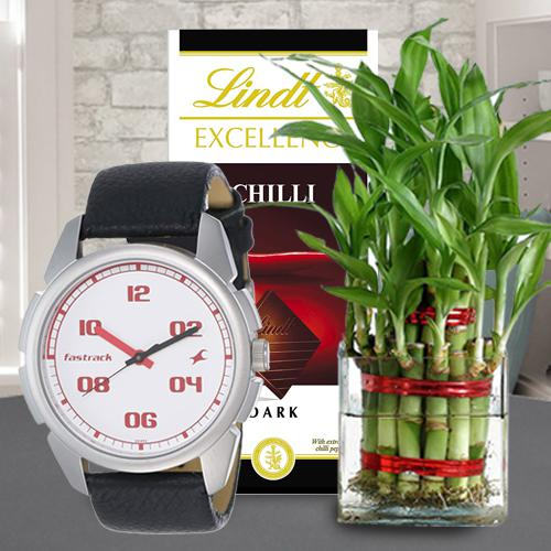 Irresistible Lindt Chocolate with Bamboo Plant N Fastrack Watch