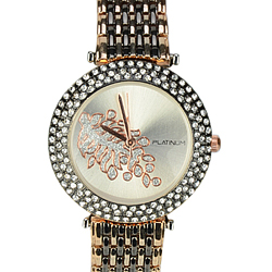 A Stylish Womens Special American Diamonds Watch