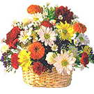 Send Charming colorful Seasonal Flower Basket to Kerala