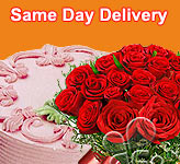 Send Flowers to  Same Day