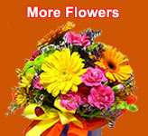 Send Flowers to